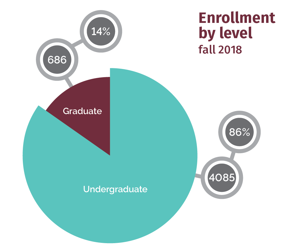 Enrollment by Level