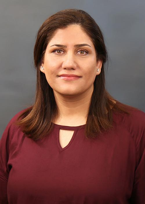 Headshot of Somayeh Bakhtiari Ramezani